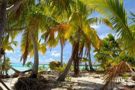 micronesia: The gorgeous color of Aitutaki lagoon and his remote atolls, Cook Islands