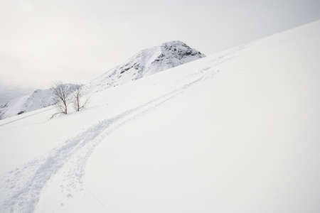 off piste: Deep zigzag shaped ski track on off piste candid slope covered by powder snow in a cloudy day  Stock Photo