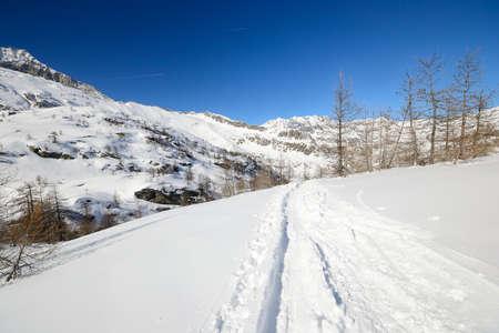mountainscape: Back country ski tracks in scenic winter mountainscape, italian Alps