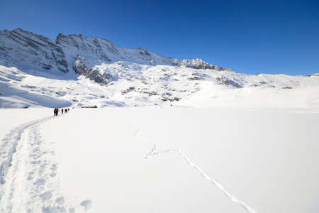 deep powder snow: Group of alpinist hiking uphill by ski touring in powder snow with deep track in the foreground and scenic high mountain view in the background  Rear view  Location  italian Alps, Piedmont