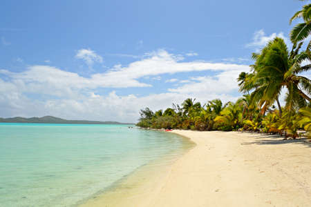 The gorgeous turquoise sea and desert beach in Ee Island  Woman walking on the beach  Location  Aitutaki atoll, Cook Islands