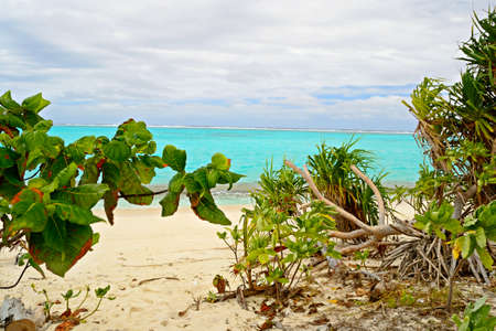 The gorgeous turquoise sea and vegetation in One Foot Island  Aitutaki, Cook Islands  with tropical stormy weather at the horizon  photo