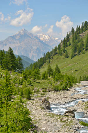 Green pasture, larch trees and little turquoise stream in breathtaking alpine landscape  The majestic peak of M  Chaberton  3130 m  in the background  Location  western Alps, Piedmont, Italy  photo
