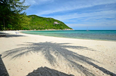 Gorgeous tropical bay with the shadow of coconut palm trees at Ao Haad Khuad, Koh Phangan, Southern Thailand  photo