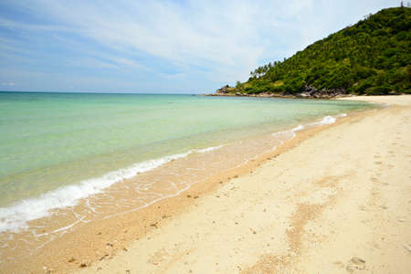 Gorgeous tropical beach with lush green coconut palm trees at Ao Haad Khuad, Koh Phangan, Southern Thailand  photo