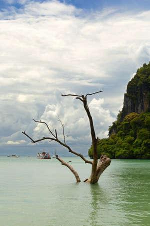 railey: Alta marea nella suggestiva Railey Bay, Krabi, nel sud della Thailandia Archivio Fotografico