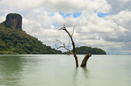 railey: Alta marea nella suggestiva Railey Bay, Krabi, Sud della Thailandia
