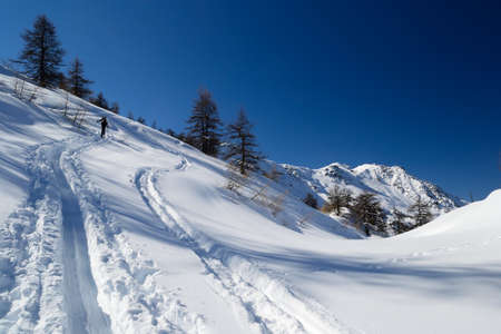 deep powder snow: Alpinist hiking uphill by ski touring in powder snow with deep tracks in the foreground  Unrecognizable person