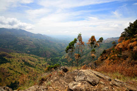 ella: Wide angle view of the Hill Country, Sri Lanka, from the summit of Ella Rock
