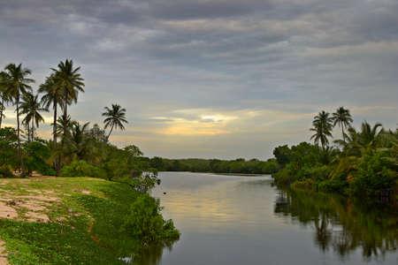 backwaters: Wonderful sunset on Tangalla backwaters  Sri Lanka