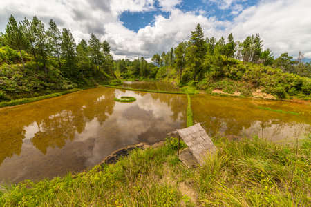toraja: Stunning landscape and bright rice fields in Tana Toraja, South Sulawesi, Indonesia. Wide angle view. Stock Photo