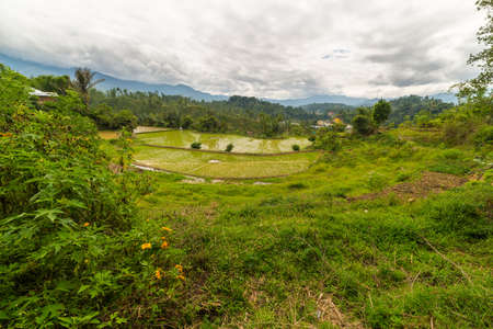 toraja: Stunning landscape and bright rice fields in the remote Mamasa region, West Tana Toraja, South Sulawesi, Indonesia. Wide angle view. Stock Photo
