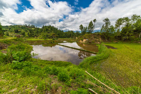 Stunning landscape and bright rice fields in the remote Mamasa region, West Tana Toraja, South Sulawesi, Indonesia. Wide angle view. photo