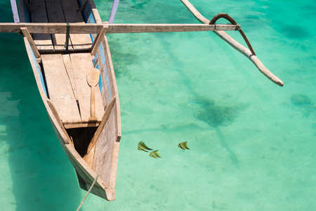 exoticism saltwater fish: Three butterfly fish viewed from above near traditional wooden boat floating on the transparent sea of the remote Togean (or Togian) Islands, Central Sulawesi, Indonesia.