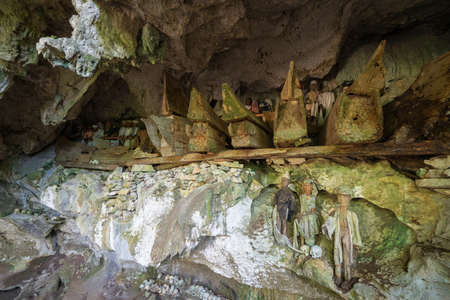 Tampangallo (Tana Toraja, South Sulawesi, Indonesia), traditional burial site where coffins are placed in caves or hanging from the cliff, guarded by balconies of dressed wooden statues, images of the dead persons (called tau tau in local language). 新聞圖片