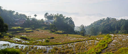 Traditional villages with boat shaped roofs in stunning landscape of rice fields on the mountains of Batutumonga, Tana Toraja, South Sulawesi, Indonesia. Panoramic view, soft early morning sunlight. photo