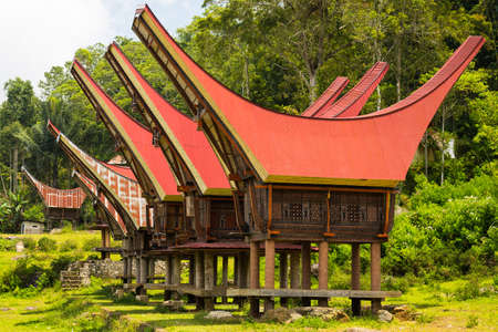 sulawesi: Traditional village of residential buildings with decorated facade and boat shaped roofs. Tana Toraja, South Sulawesi, Indonesia. Stock Photo