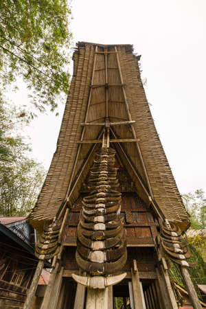 heads old building facade: Details of outstanding local architecture, wood carvings, paintings and traditional decoration with buffalo horns in the foreground. Tana Toraja, South Sulawesi, Indonesia. Wide angle view from below. Stock Photo