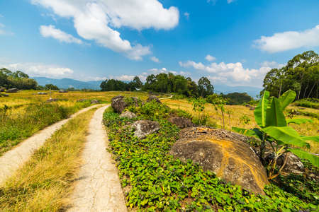 toraja: Winding country road leading through the multi colored rice fields of Batutumonga into the stunning landscape on the mountains of northern Tana Toraja, South Sulawesi, Indonesia. Stock Photo