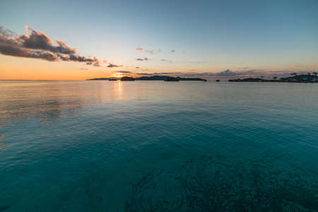 exoticism saltwater fish: School of fish underwater viewed from above at sunrise in the remote Malenge, Togian Islands, Central Sulawesi, Indonesia.