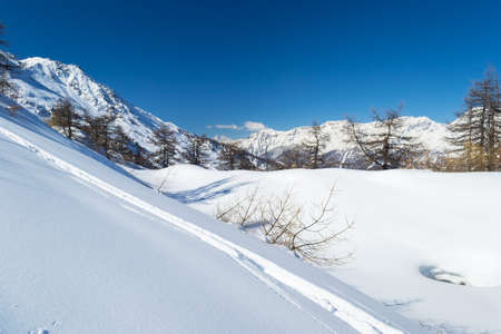 bardonecchia: Majestic peaks in a winter scenery and candid ski slope with freeride tracks in the foreground. Frais ski resort, Piedmont, italian Alps.