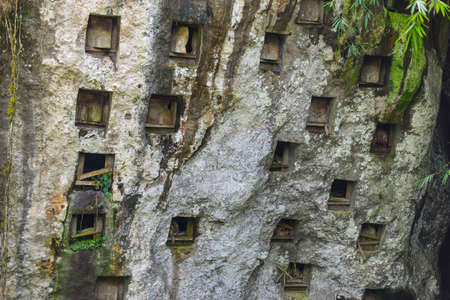 primitivism: The traditional burial site of Pana deep into the jungle. Coffins are placed in caves carved into the rocky cliff. Tana Toraja, South Sulawesi, Indonesia Editorial