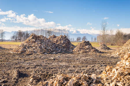 Piles of wooden fresh mulch outdoors on field, discard of timber industry. Clear blue sky, natural setting, scenic alpine background. Concept of recycling on field. photo