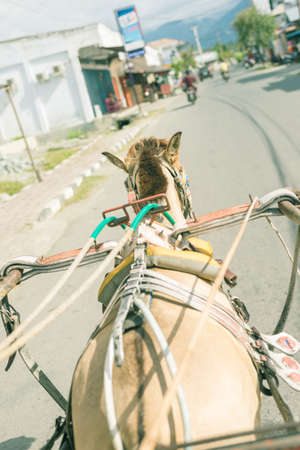 personal perspective: Romantic view of asian street life from vintage horse powered rickshaw. Concept of travelling around the world. Personal perspective, selective focus, oblique view and old retro filtered.