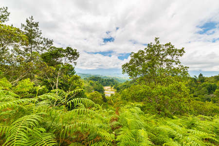 Dense rainforest and stunning landscape in Toraja Area, South Sulawesi, Indonesia. Panoramic view from above with dramatic clouds. photo