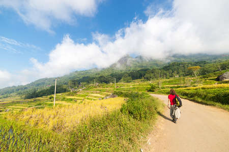 Backpacker exploring the stunning landscape on the mountains of northern Tana Toraja, South Sulawesi, Indonesia. Country road crossing the multi colored rice fields of Batutumonga. Concept of people traveling. photo