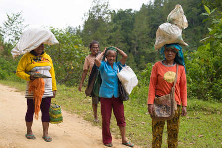toraja: Mamasa, Sulawesi, Indonesia - August 18, 2014: Unidentified group of women carrying bags and sacks on a road in the countryside of Mamasa, South Sulawesi, Indonesia. Concept of manual working in developing countries. Editorial