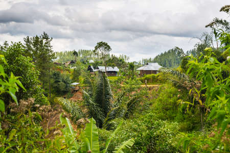 toraja: Little traditional village hidden in the jungle of the Mamasa countryside,  West Tana Toraja, remote but upgrowing travel destination in South Sulawesi, Indonesia.