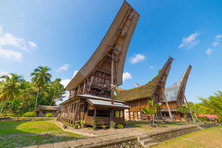 Row of traditional houses in a tipical traditional village of Tana Toraja, South Sulawesi, Indonesia. Wide angle view from below in a bright day of summer. Outstanding local architecture, boat shaped rooftop and traditional decoration. 報道画像