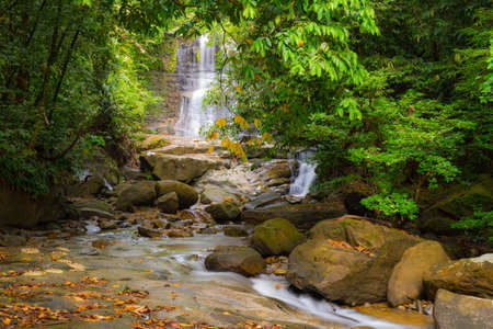 waterfall: Majestic waterfall viewed in the distance amid the dense lush green jungle of Kubah National Park, West Sarawak, Malaysian Borneo, with flowing stream and boulders in the foreground. Blurred effect on water, long exposure.