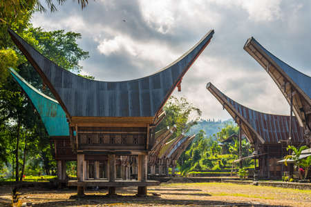 primitivism: Row of traditional houses and rice barns facing each other in a tipical traditional village of Tana Toraja, South Sulawesi, Indonesia. Outstanding local architecture with boat shaped rooftop and traditional decoration. Stock Photo