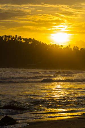 tourist resort: Golden sunset on desert beach with indian ocean waves and jungle silhouette in backlight. Tourist resort in Mirissa, Sri Lanka, famous travel destination. Blurred motion, long exposure.