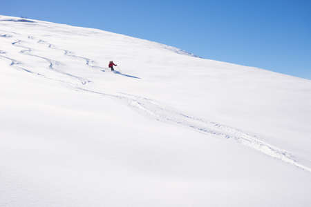 off piste: One person skiing downhills off piste on snowy slope in the italian Alps, with bright sunny day of winter season. Thick Powder snow with ski tracks.