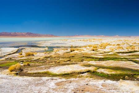 sal: Aguas termales colorido con dep�sitos de minerales y algas en las tierras altas andinas, Bolivia. Salt lake, cordillera y volcanes en el fondo en el camino hacia el famoso Salar de Uyuni.