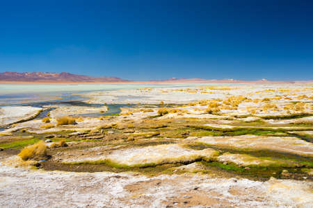 mineral salt: Colorful hot spring with deposits of minerals and algae on the Andean Highlands, Bolivia. Salt lake, mountain range and volcanos in the background on the way to the famous Uyuni Salt Flat.