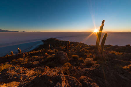 incahuasi: The rising sun at the horizon over the majestic Uyuni Salt Flat, among the most important travel destination in Bolivia. Wide angle shot in backlight from the Incahuasi Island with glowing rocks and cactus.