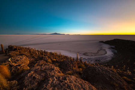 incahuasi: Uyuni Salt Flat viewed from the summit of the Incahuasi Island, among the most important travel destination in Bolivia. Wide angle shot at dawn with glowing cactus in the foreground.