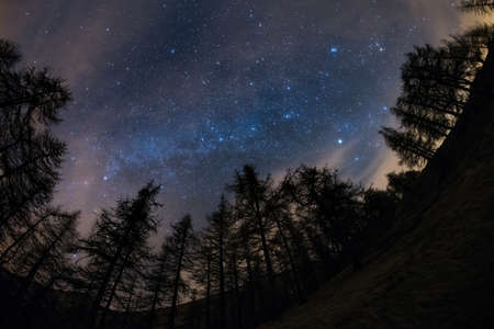 The outstanding beauty of the starry sky and Milky Way in winter season, captured from black conifer woodland. Scenic distortion and 180° view due to fisheye lens, some acceptable digital noise due to 1600 iso setting. 스톡 콘텐츠