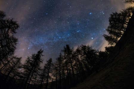 De uitzonderlijke schoonheid van de sterrenhemel en de Melkweg in het winterseizoen, gevangen van zwart conifeer bos. Scenic vervorming en 180 ° uitzicht als gevolg van fisheye-lens, wat aanvaardbaar digitale ruis te wijten aan 1600 ISO-instelling.