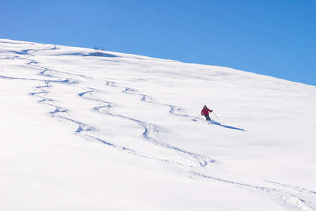 One person skiing downhills off piste on snowy slope in the italian Alps, with bright sunny day of winter season. Thick Powder snow with ski tracks.