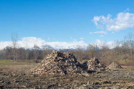 discard: Piles of wooden fresh mulch outdoors on field, discard of timber industry. Clear blue sky, natural setting, scenic alpine background. Concept of recycling on field.