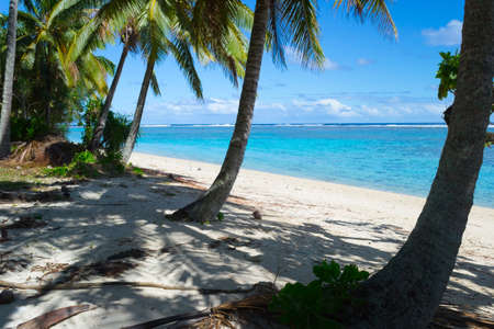 rarotonga: The gorgeous turquoise sea of Rarotonga lagoon viewed from white sandy beach under coconut palm tree shadow.
