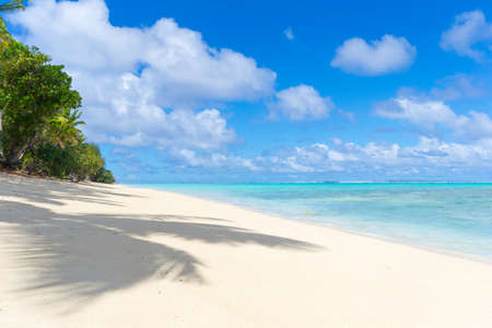 The gorgeous turquoise sea of Rarotonga lagoon viewed from white sandy beach under coconut palm tree shadow.