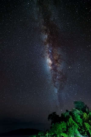 soul searching: Gorgeous bright Milky Way and starry sky over lush green tropical forest viewed from the remote Malenge, Togian (or Togean) Islands, Sulawesi, Indonesia. Long exposure, some acceptable grain.