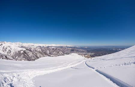 powder snow: Free ride ski tracks on snowy slope. Fresh powder snow in a bright day of winter season. Wide angle panoramic view, italian Alps.