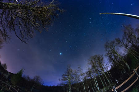 fisheye: Fisheye view of the starry sky with blurred motion clouds, captured from sparse beech woodland. Jupiter and Lion constellation in the center. Scenic distortion and 180� view.